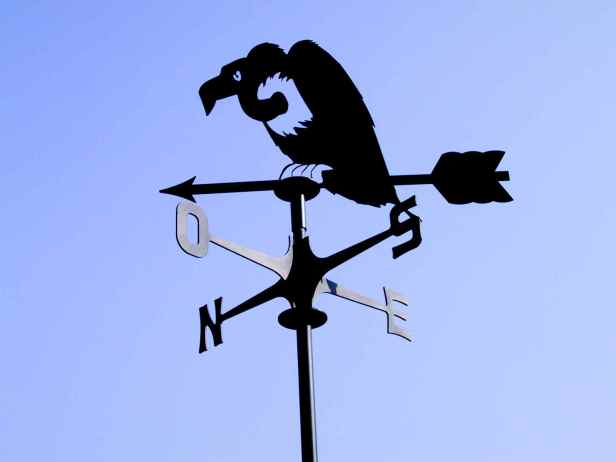 segnavento_avvoltoio