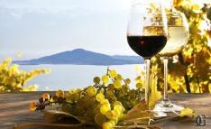 vesuvio-prodotti-tipici-campani-vini-campani